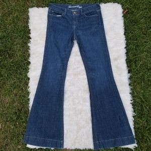 12 Jeans AEO Long Flare Wide Leg Stretch Denim